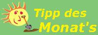 Tipp_des_Monat